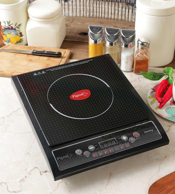 Review of Pigeon Cruise Induction Cooktop